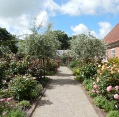 Haven på Skønager