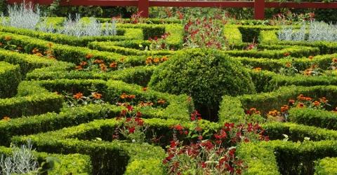 Vordingborgs Botanic Garden