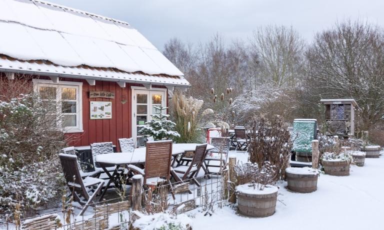 gå en vintertur i økologiens have